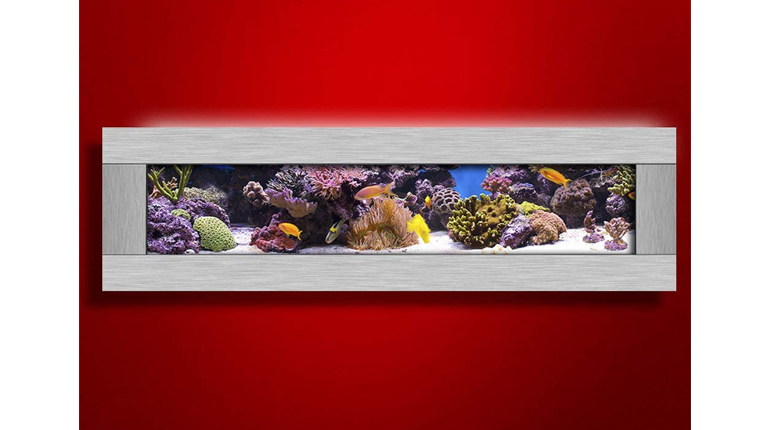 Aussie Aquariums 2.0 Silver Panoramic Wall Mounted Aquarium