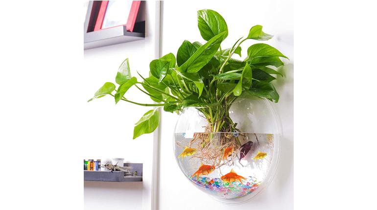 Outgeek Acrylic Wall Fish Bubble