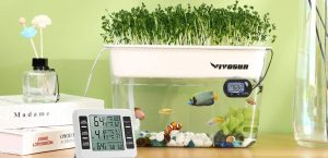 Self-Cleaning Fish Tanks The Ultimate Review Guide